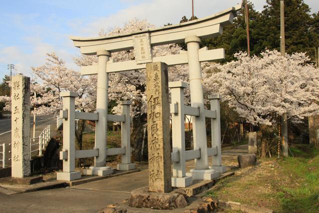 五十嵐神社の桜_a0267861_21123887.jpg