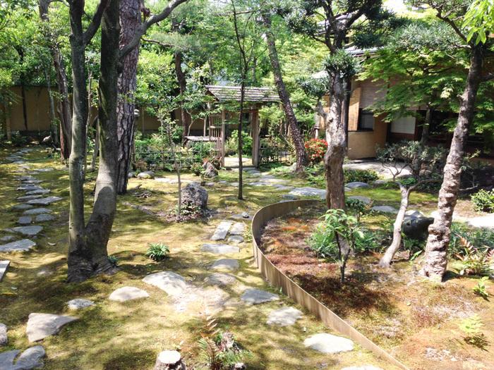 京都グラフィー_c0016177_20533230.jpg
