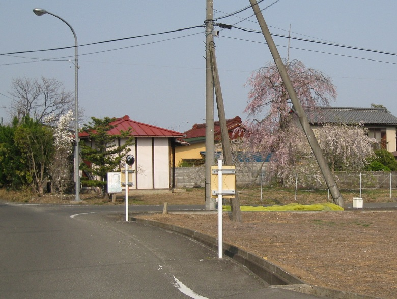のりしろ散歩~野寺情報を求めて追分を南へ進む⑥釈迦堂しだれ桜_a0087378_449290.jpg