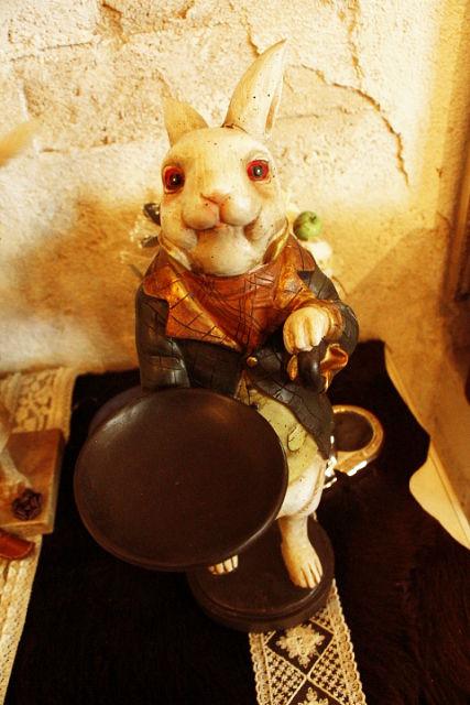 新人のウサギさん。。。_b0210688_23125553.jpg