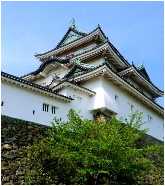 新緑の和歌山城_b0104092_17405112.jpg