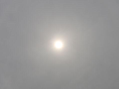 曇りの月曜日♪(*^-^*)_c0140599_11003036.jpg