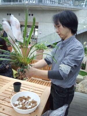 苔と植物の相性があるんです。 石河英作さん_c0103137_1203476.jpg