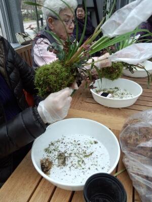 苔と植物の相性があるんです。 石河英作さん_c0103137_1264928.jpg