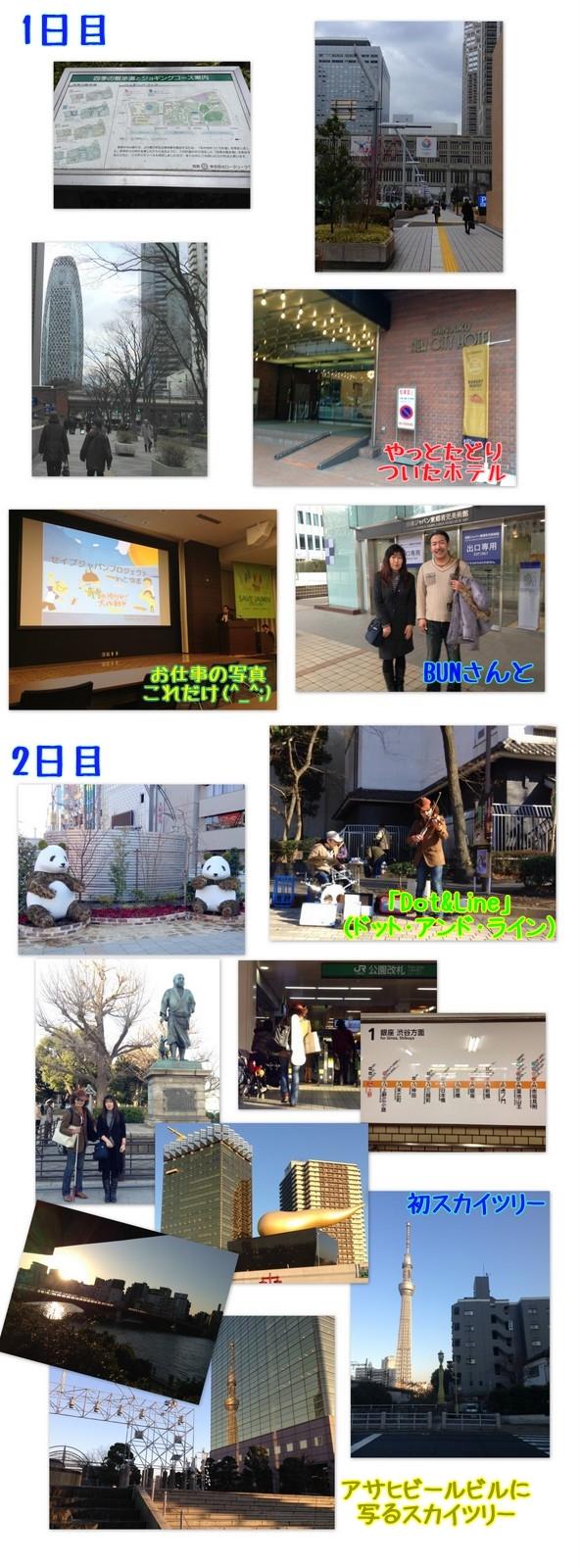 今年に入って東京方面へPart.1(1月30,31日)_a0007552_22481870.jpg