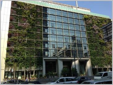 東京で緑を見る_e0326953_10381942.jpg