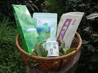 菊池水源茶 新芽の芽吹きと寒冷紗かけ!まもなくお茶摘みです!!_a0254656_18265575.jpg