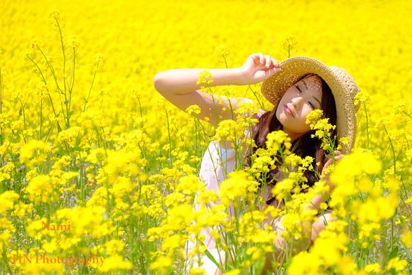 菜の花畑でロケーション撮影_a0191069_1481930.jpg