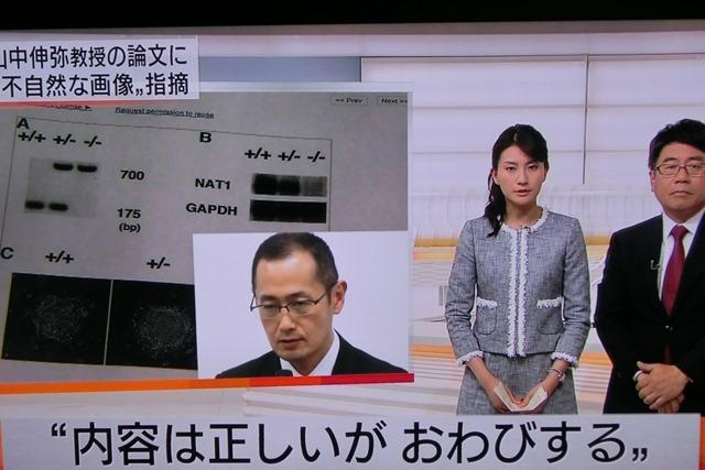 山中伸弥先生論文疑惑で謝罪山中先生謝罪の必要はありません、山中伸弥先生若い研究者に研究道を教えて_d0181492_051757.jpg