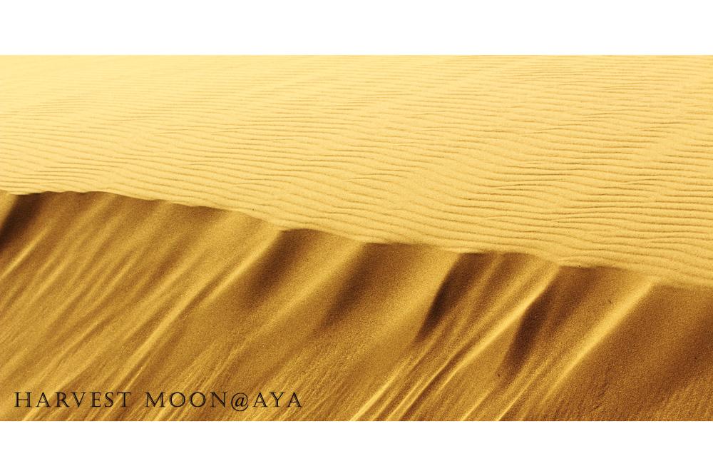 Art of sand_b0208495_23365415.jpg