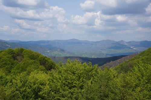 山は楽しい♩_f0106597_05021885.jpg