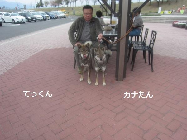 f0143123_20390002.jpg