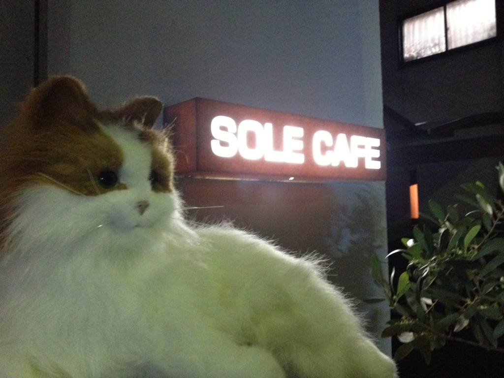 mt 2nd tour SOLE CAFE_f0181924_001575.jpg