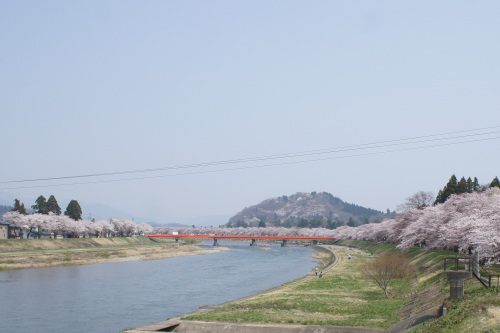 桜の時期の角館_d0004728_11253506.jpg