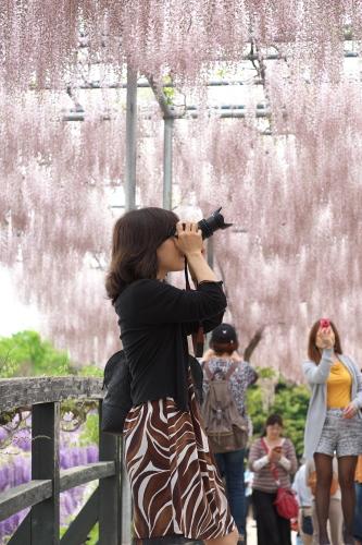 Flower Park  ・・・ふじのはな・・・_f0333031_10093456.jpg
