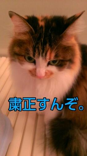 c0181639_0172215.jpg