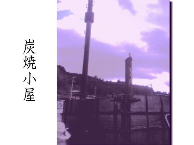 a0155343_18501082.jpg
