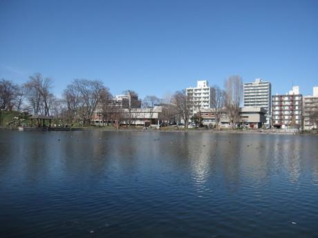 GW何処へも行けないので公園を散歩_a0279743_1533522.jpg