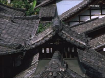 「hayashi films」を仮配信_b0115553_08093109.png