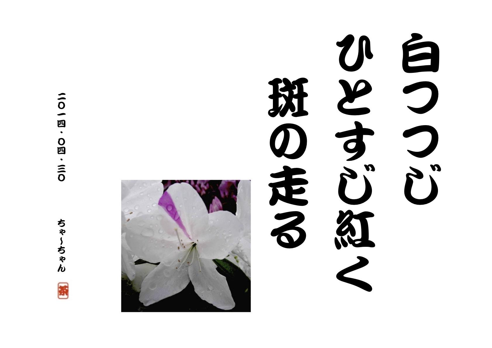 b0142158_15373879.jpg