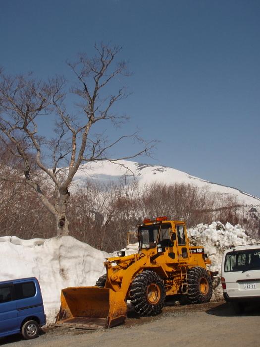 除雪が済んで春風吹く鳩待峠から至仏山へ_e0292469_16394546.jpg