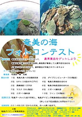 「奄美の海!フォトコンテスト 明日から開催!!」_b0033573_22052657.jpg