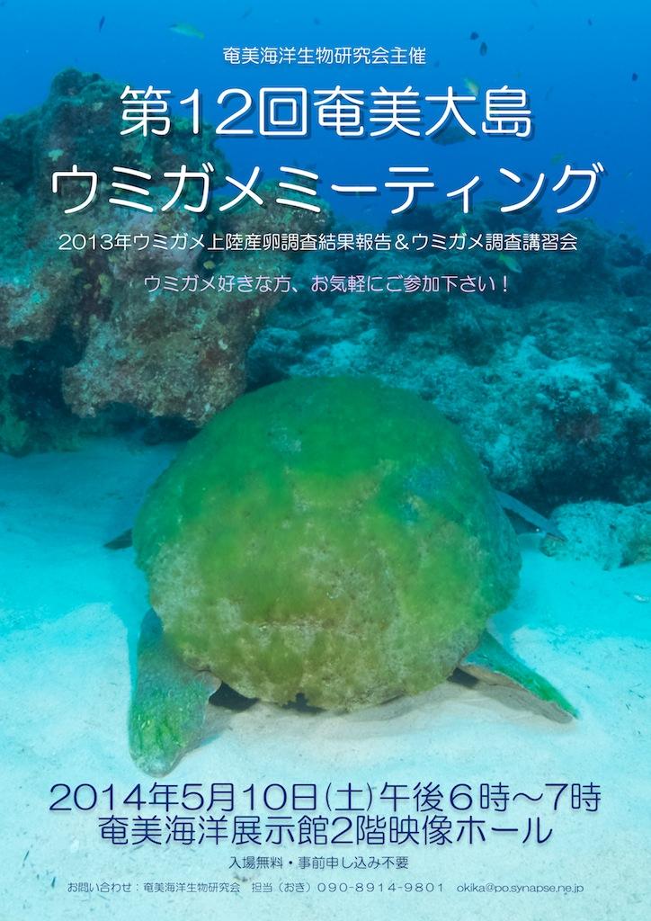 奄美大島ウミガメミーティング開催のお知らせ_a0277075_120850.jpg