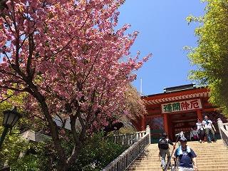 高尾山へ行ってきました!_a0136788_1591196.jpg