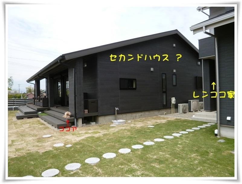 b0104592_1110283.jpg
