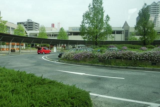 阪急電車「西宮北口」は花々がいっぱい、宝塚歌劇100周年ラッピング電車で春爛漫、阪急沿線は楽しい_d0181492_20322312.jpg