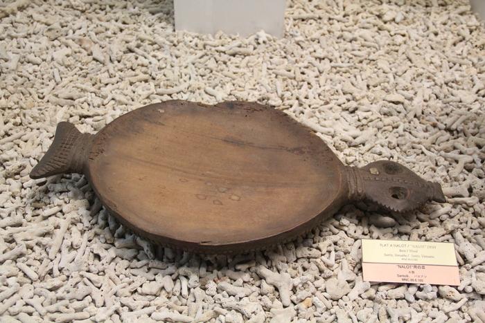 ニューカレドニア博物館の日_c0100195_8312990.jpg