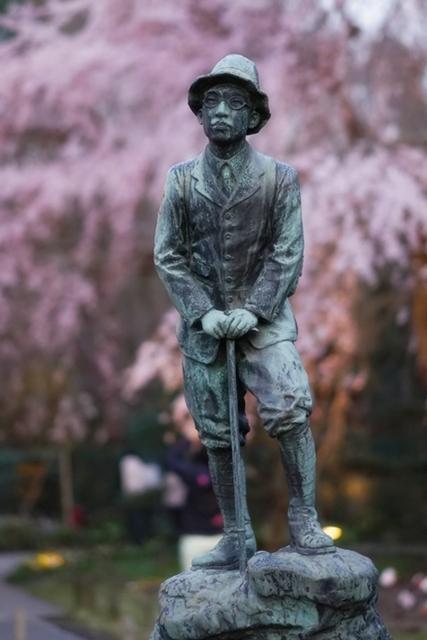 秩父宮記念公園 夜桜ライトアップ_b0145398_21421270.jpg