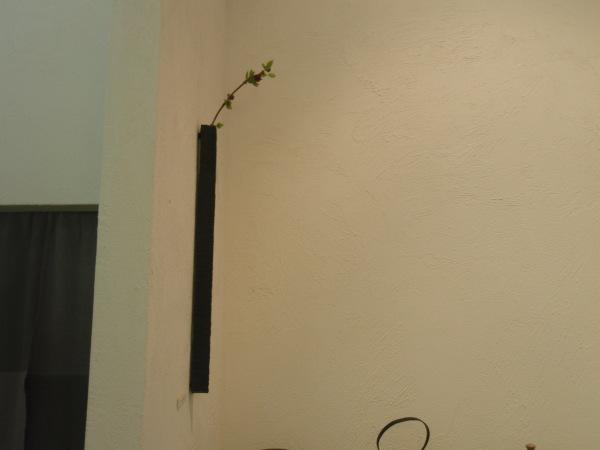 お花を入れました_b0132442_18303691.jpg