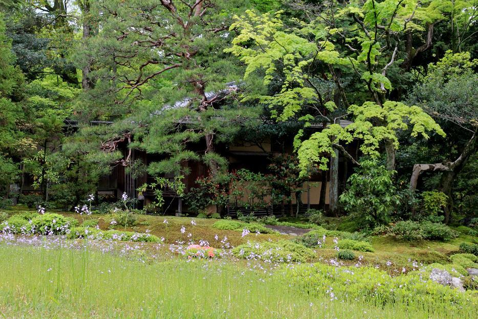 京都で別荘   ~無鄰庵~_a0107574_18420445.jpg