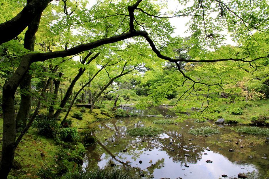 京都で別荘   ~無鄰庵~_a0107574_18425745.jpg