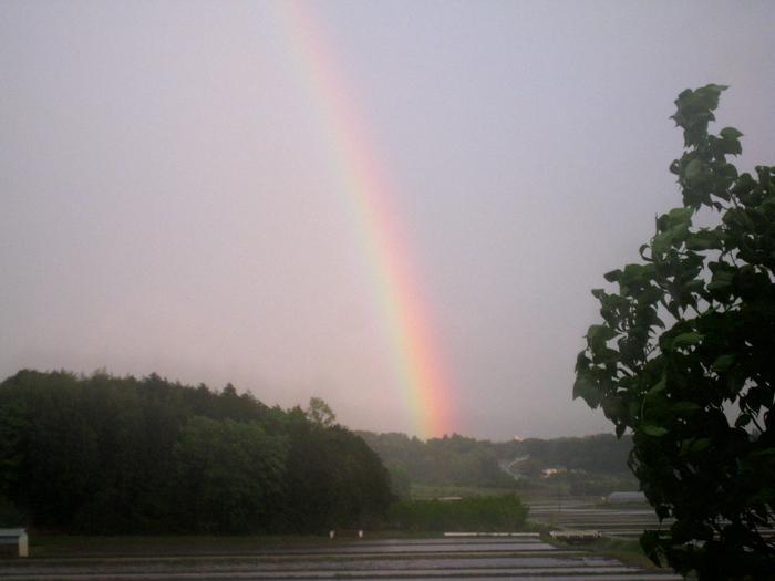 虹の生まれるところ_e0303187_20273892.jpg