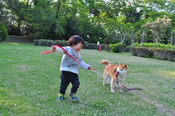 かぼちゃんとぼく_a0126590_23364267.jpg