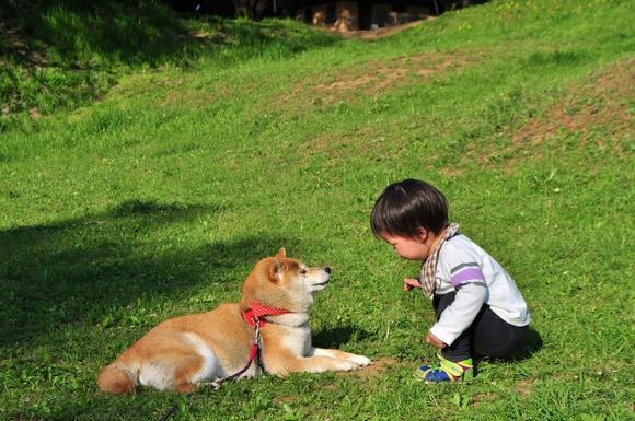 かぼちゃんとぼく_a0126590_23383751.jpg