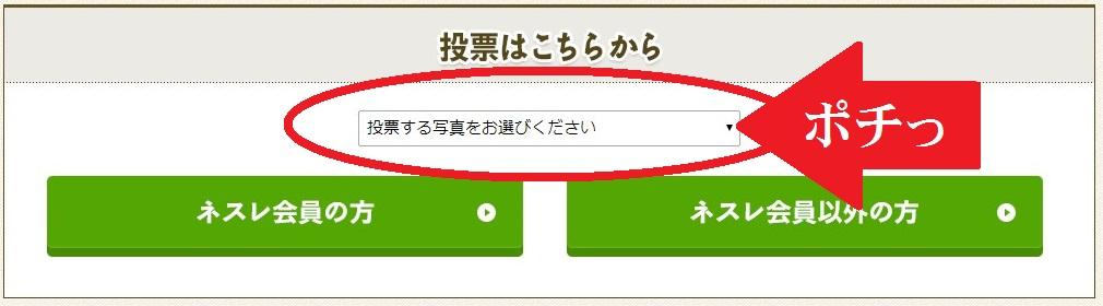 びっくり顔コンテスト☆ポチっと投票♪