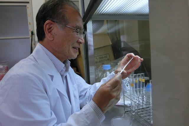 小保方晴子さんSTAP細胞研究の進捗心配、研究開発と特許の重要性特許の取得方法、万能細胞と研究開発_d0181492_2211797.jpg