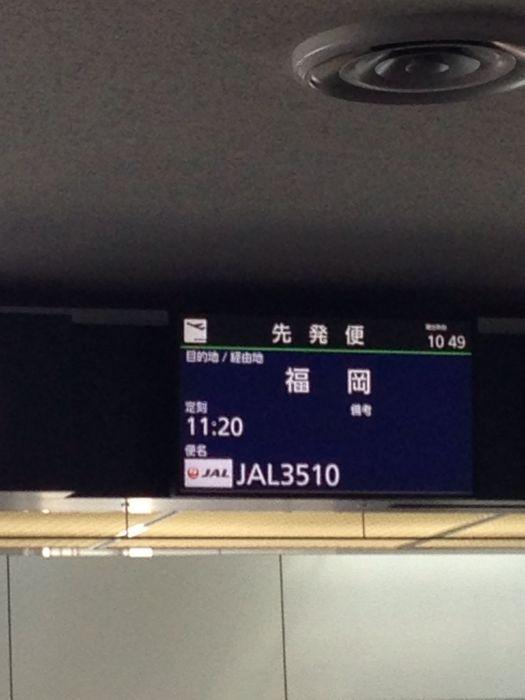 九州_a0071514_495538.jpg
