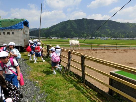 馬小屋の見学♪_e0061225_17113674.jpg