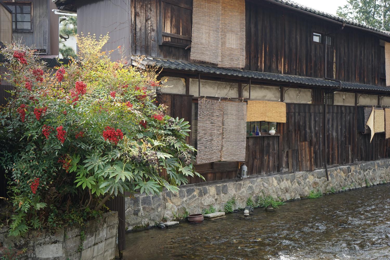 朝の京都_b0069128_8424925.jpg
