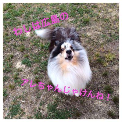 福島展_f0126965_6282650.jpg