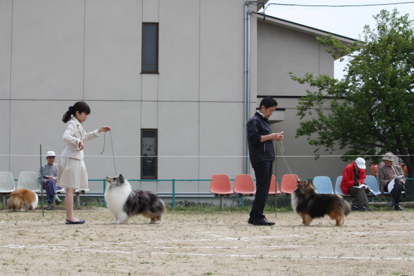 福島展_f0126965_9134476.jpg