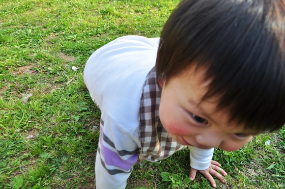 かぼちゃんとぼく_a0126590_0185637.jpg