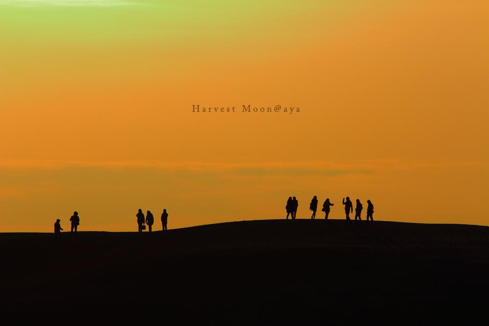 砂丘の人々_b0208495_2162881.jpg