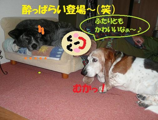 f0121712_6264369.jpg