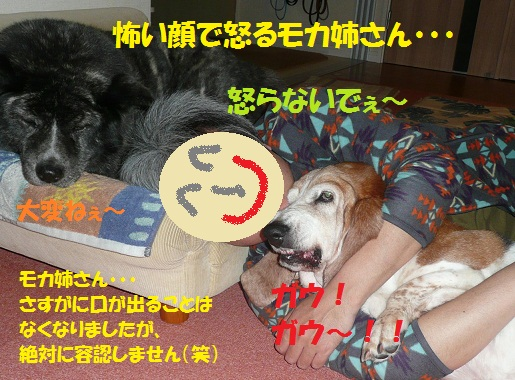 f0121712_627878.jpg