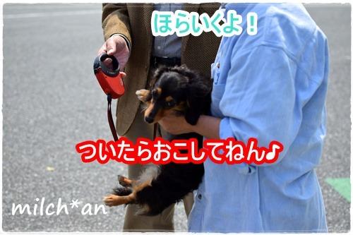 b0115642_23105665.jpg